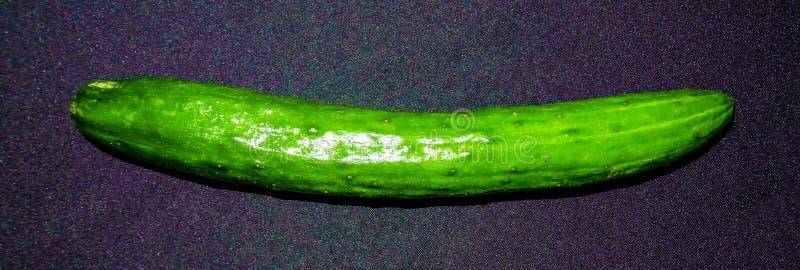 Japanese cumcumber royalty free stock photos