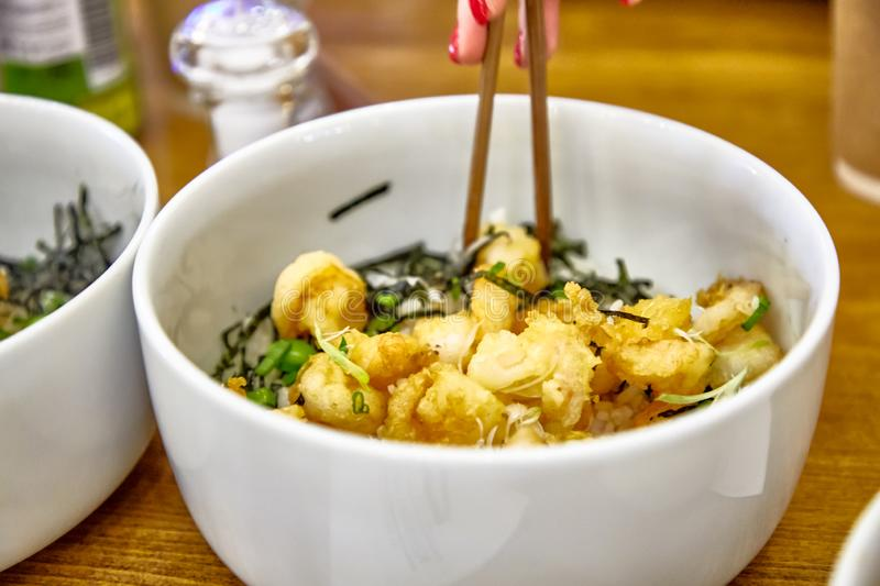 Japanese dish Donburi with chicken. Is in a special plate stock photos