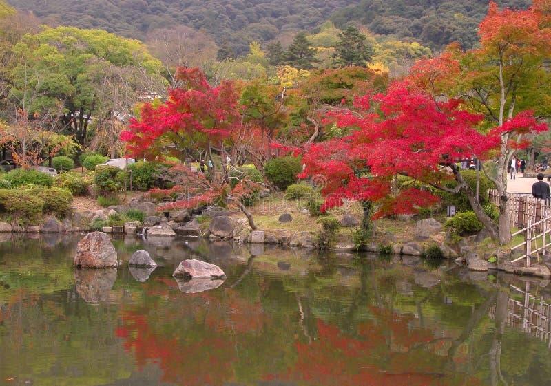 Japanese fall pond stock photos