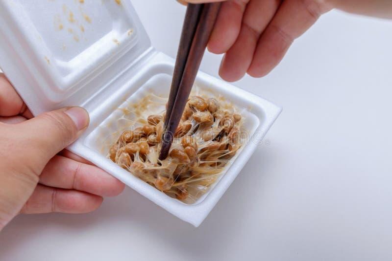 Japanese fermented soybean in foam box royalty free stock photos