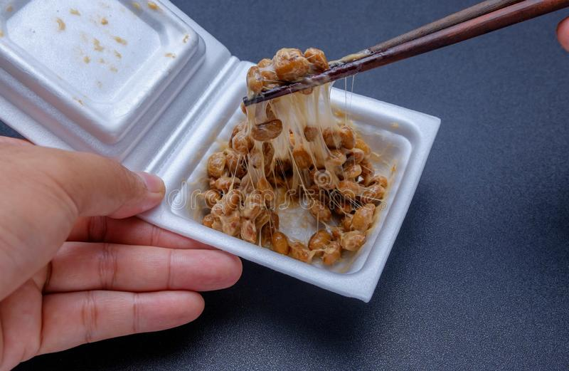 Japanese fermented soybean in foam box royalty free stock photography