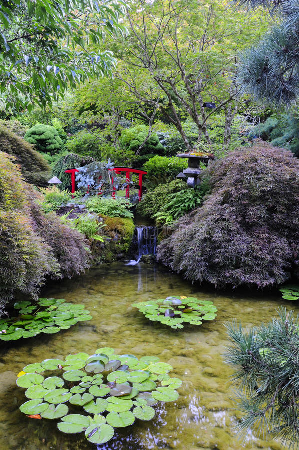 Download Japanese Garden stock photo. Image of garden, british - 10630288