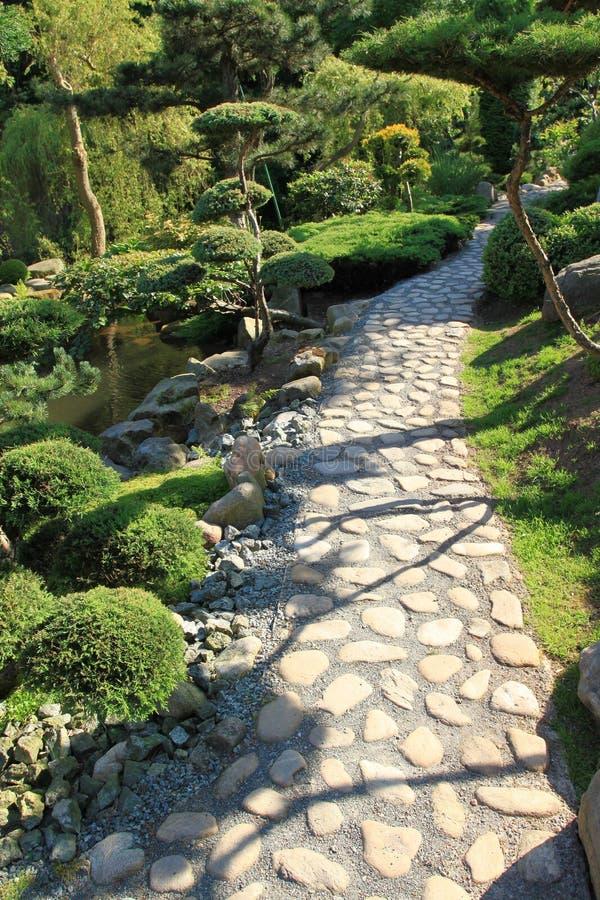 Download Japanese garden stock photo. Image of bonsai, path, footpath - 17146186
