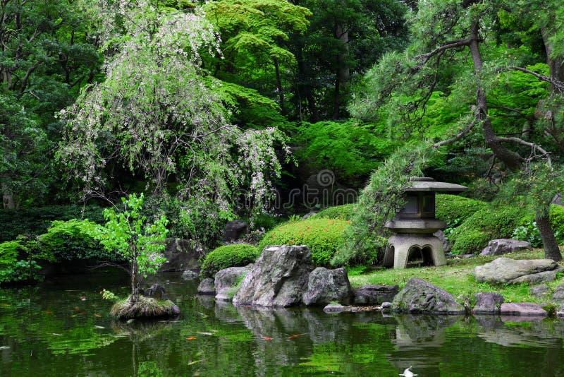 Download Japanese garden stock image. Image of spring, japanese - 21196771