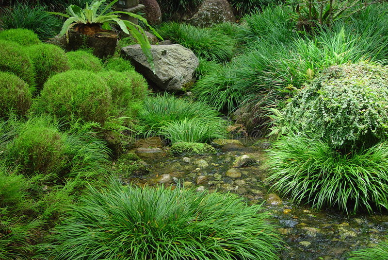 Japanese Garden stock photo. Image of park, tinggi, grass - 238536