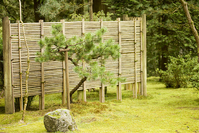Download Japanese Garden stock image. Image of asian, landscaping - 24451173