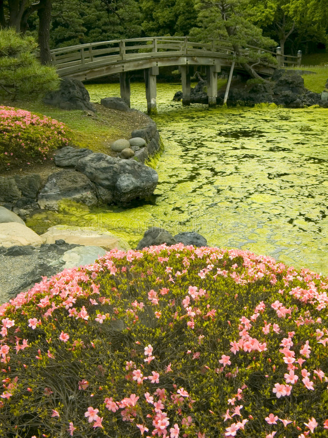 Download Japanese garden stock image. Image of smell, scent, climate - 2616645