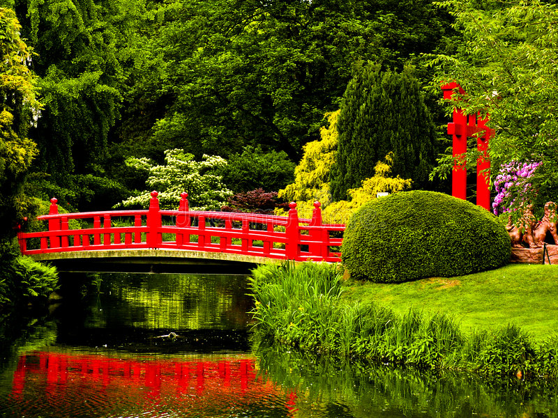 Download Japanese garden stock photo. Image of quiet, park, colorful - 4176438