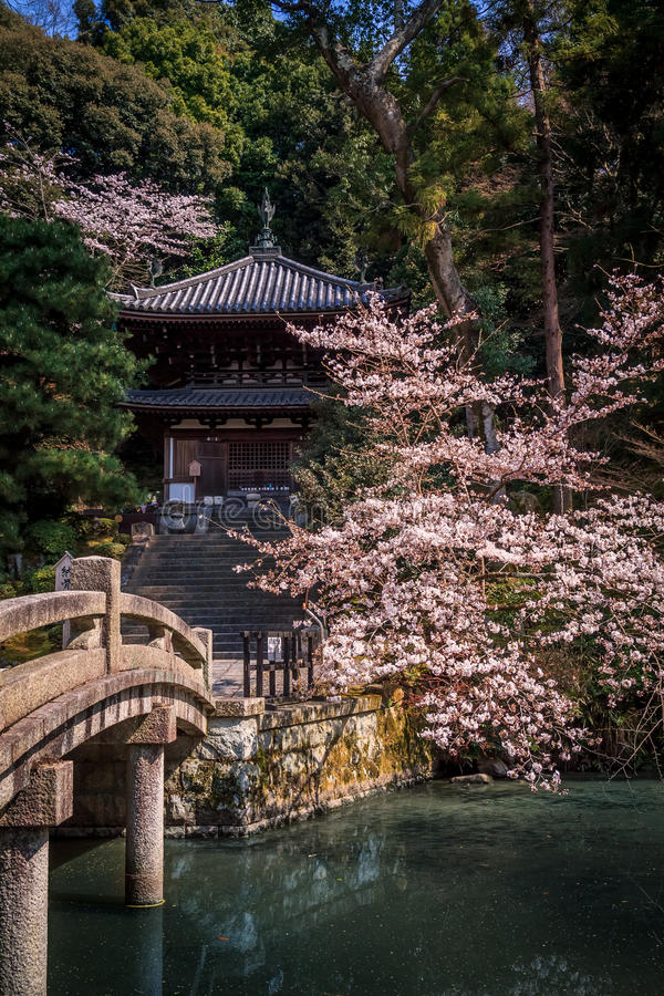 Free Japanese Garden Stock Photo - 54394880