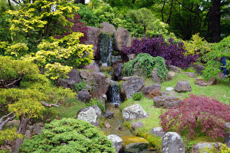 Download A Japanese garden art stock image. Image of like, tree - 14554095