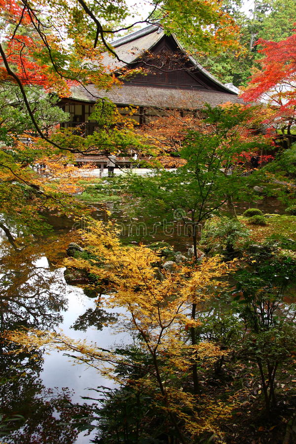 Japanese garden in autumn. Beautiful japanese garden, pond and temple in autumn royalty free stock image
