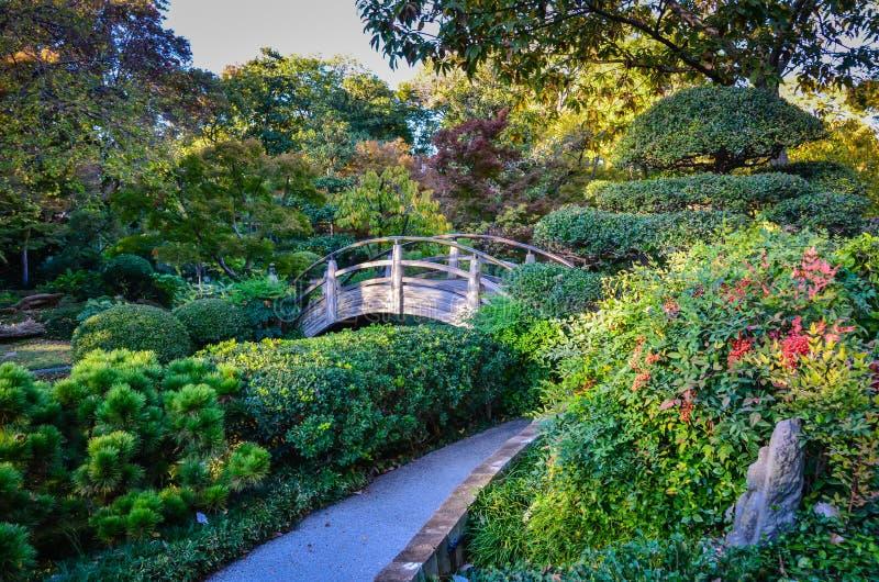 Japanese Garden In Autumn Fort Worth Botanic Garden Fort Wor Stock Photo Image 78825311
