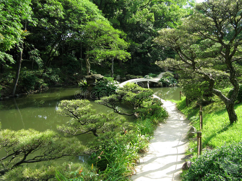 Download Japanese Garden With A Bridge Stock Image - Image: 20652073