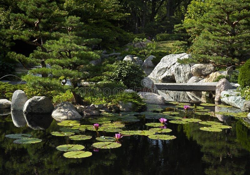 Download Japanese Garden Bridge Royalty Free Stock Photos - Image: 8493508