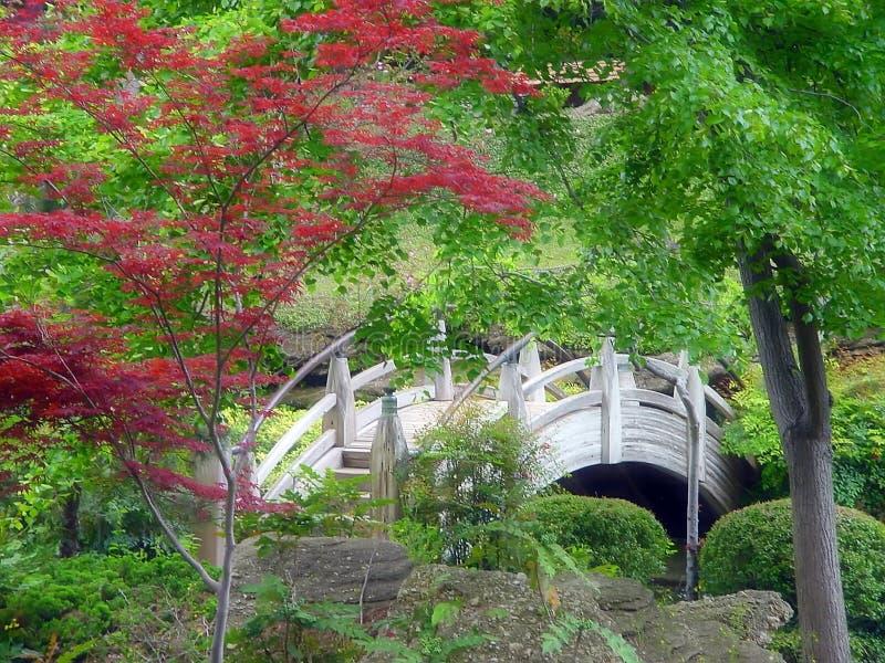 Download Japanese Garden Bridge stock image. Image of meditate, calm - 86621