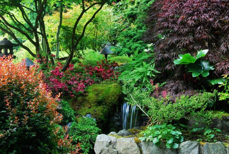 Japanese garden in butchart gardens stock photography