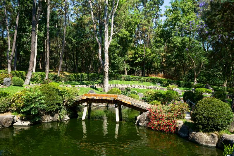 Japanese Garden of the Colomos Jalisco Forest. stock photos