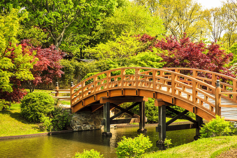 Download Japanese Garden Footbridge stock image. Image of trees - 71630671
