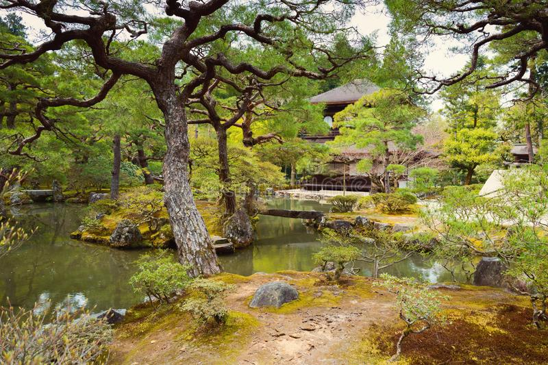 Japanese garden landscape royalty free stock images