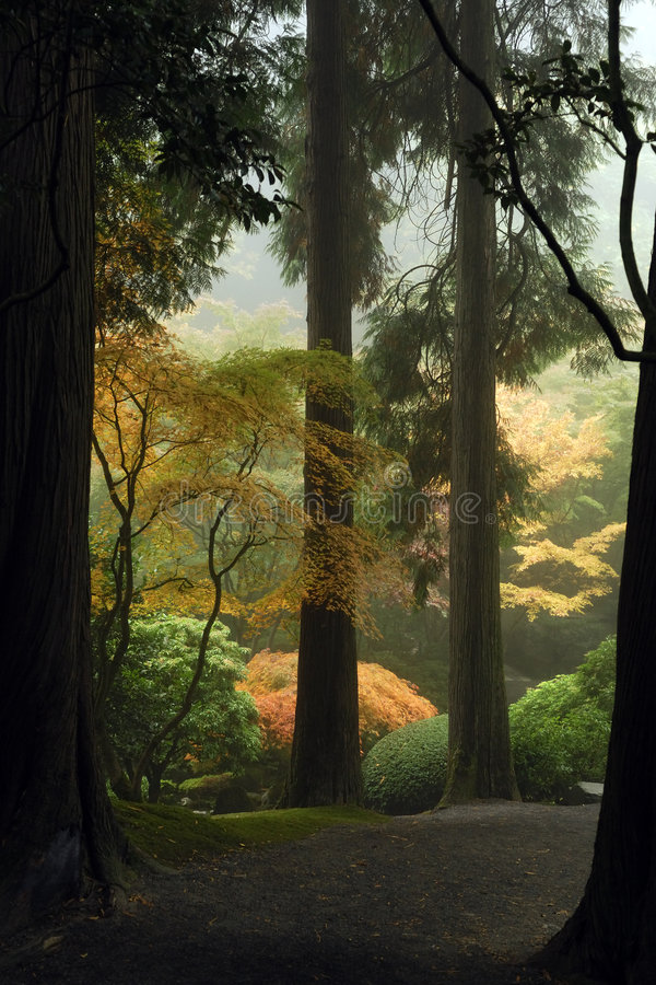 Download Japanese Garden Path stock photo. Image of mist, japanese - 1431854