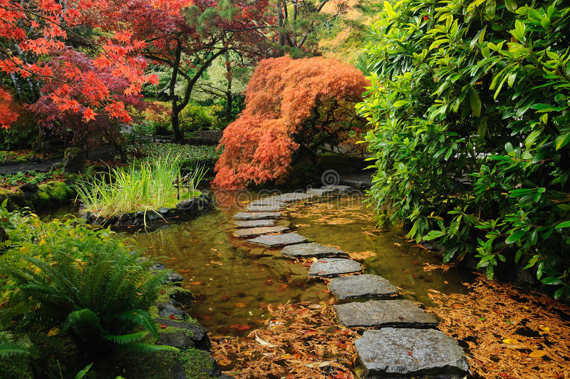 Download Japanese garden pond stock photo. Image of autumn, attraction -  17340770