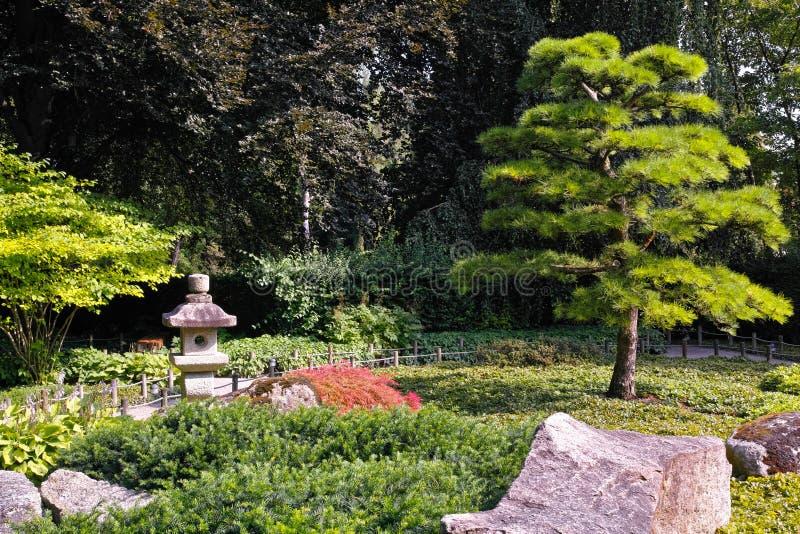 Japanese garden serenity in summer stock photos