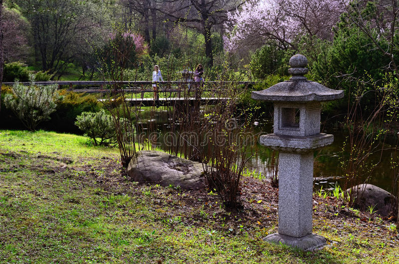 Japanese Garden in the Time of Sakura Blossoming stock images