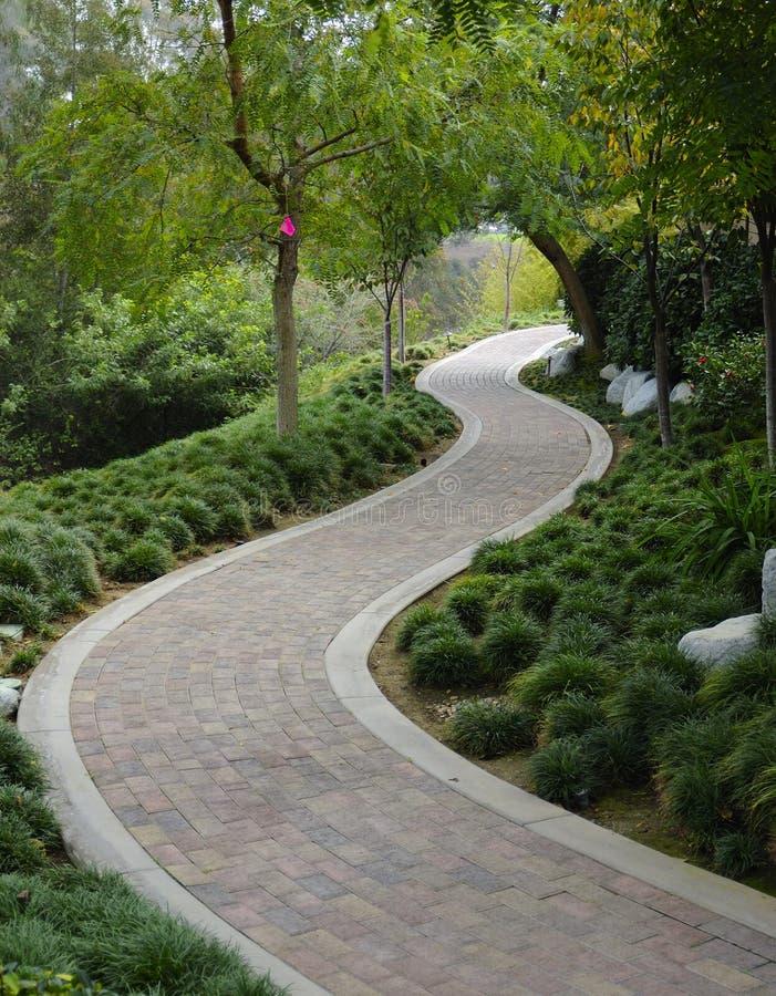 Free Japanese Garden Walkway Royalty Free Stock Photos - 6443528