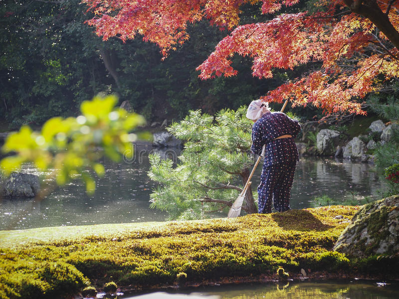 Japanese gardener in Kinkakuji temple stock images