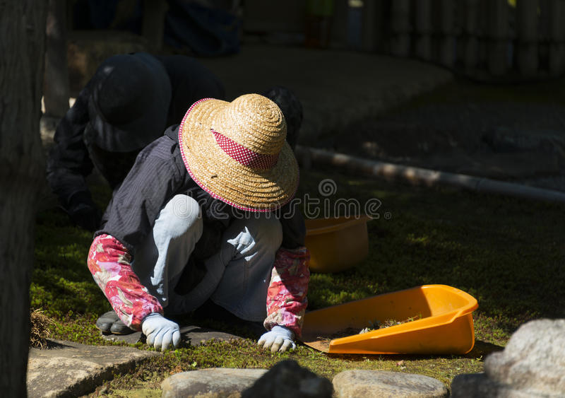 Japanese gardener, Kyoto stock photography