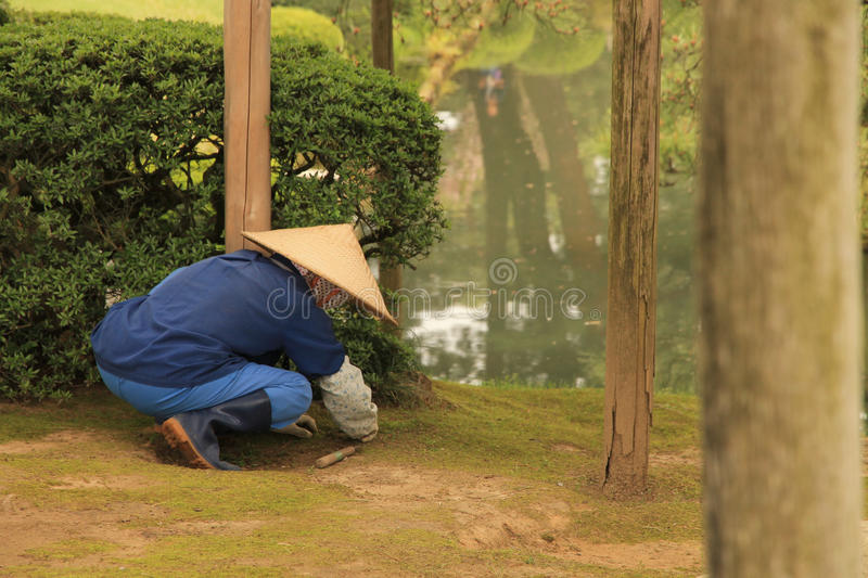 Japanese Gardener stock photography