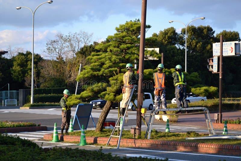 Japanese gardeners royalty free stock photos