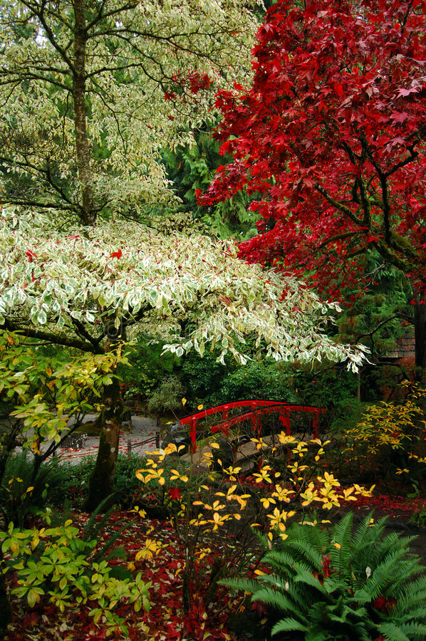 Japanese Gardens. Vancouver Island, Canada, in autumn