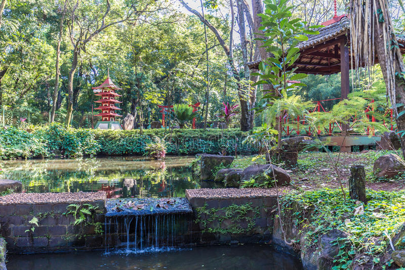 Japanese Gardens At Ribeirão Preto City Zoo Fabio Barreto. Sao Stock ...
