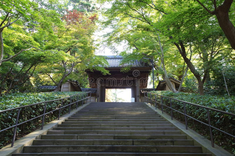 Japanese gardens and temple