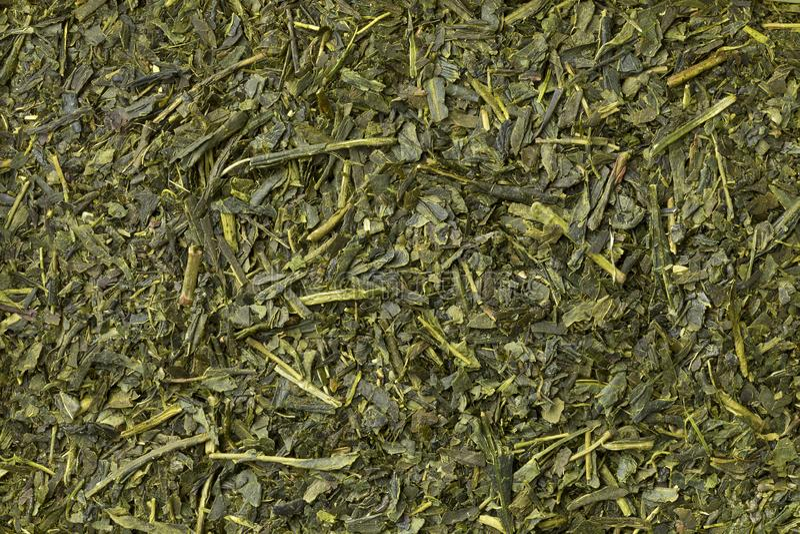 Japanese green tea full frame. Close up royalty free stock image