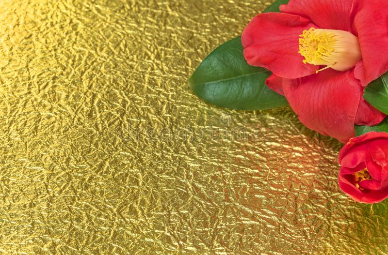 A Japanese greeting card with a Tsubaki flower also called the winter rose on a golden crumpled paper background.  royalty free stock photos