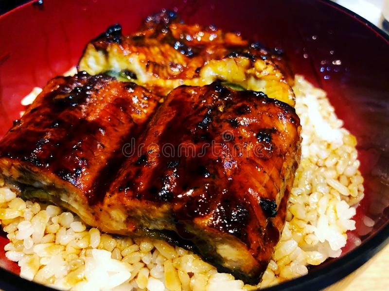 Japanese grilled eel with sweet sauce on rice cup royalty free stock photo