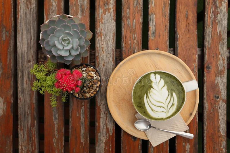 Japanese hot green tea matcha latte art with tulip pattern on the rustic wooden table with pots of cactus and succulent for decora royalty free stock photos