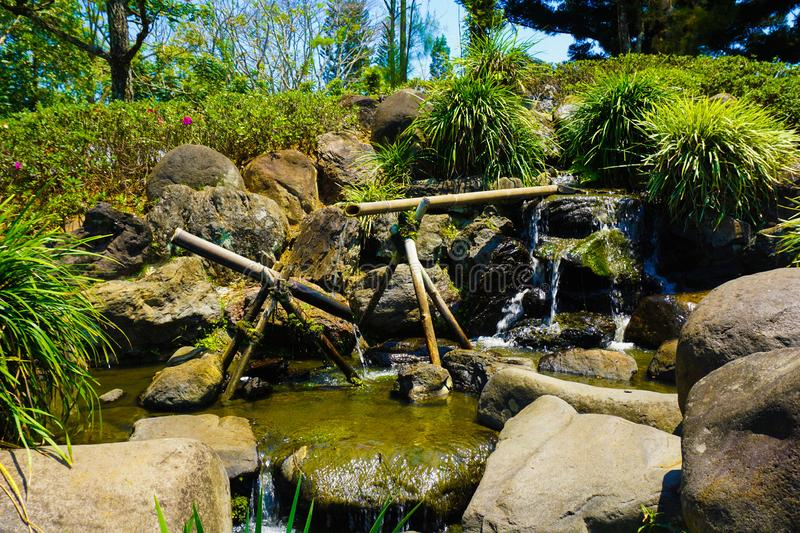 A japanese or japan graden style with water bamboo pipe line with green grass and water flowing on small pond with rock and stone royalty free stock photos