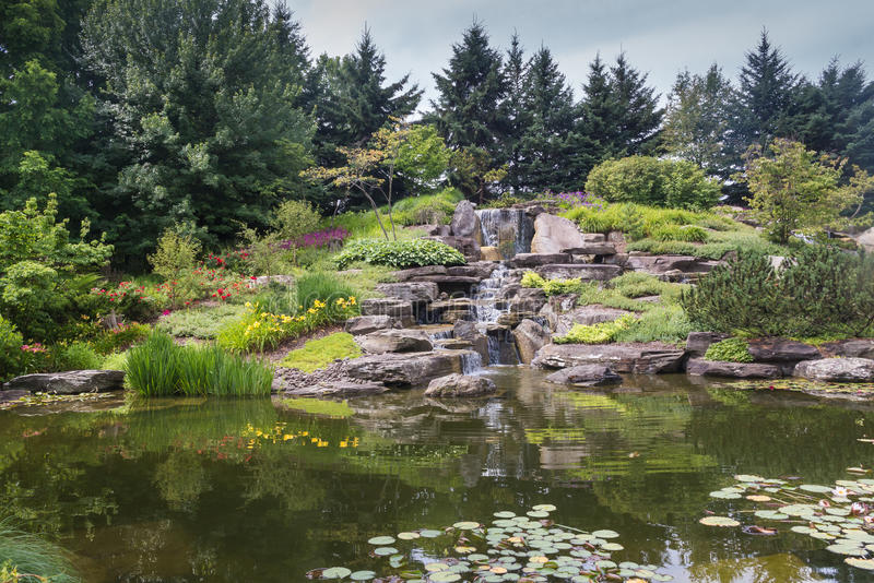 Japanese lake in Grand Rapids, Michigan, United States. Calm water of a lake with a waterfall in a japanese garden, surrounded by trees and plants. Meijer Garden royalty free stock photos