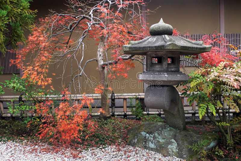 Japanese lantern and autumnal maple tree stock photo