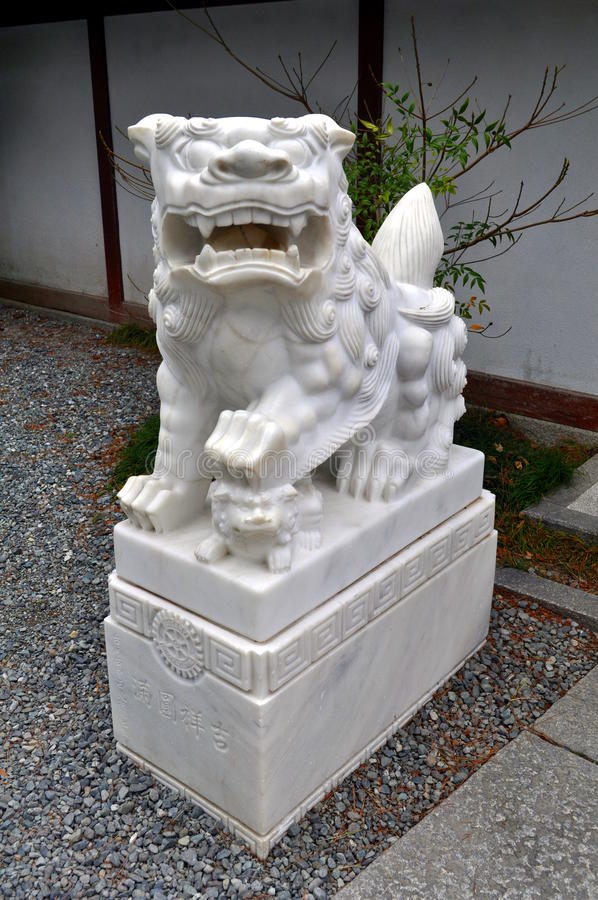 Japanese Lion Dog royalty free stock photos