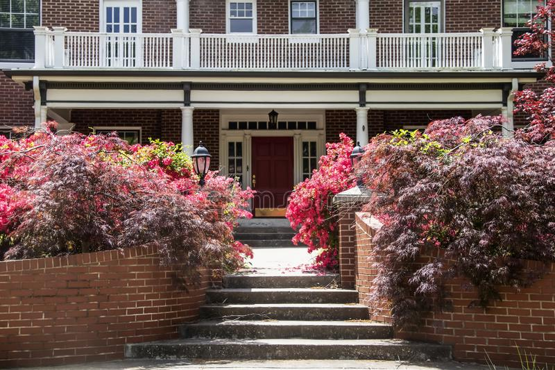 Japanese Maple bushes and Azaleas in front flower beds around steps and entrance to old fashioned vintage southern USA brick home stock image