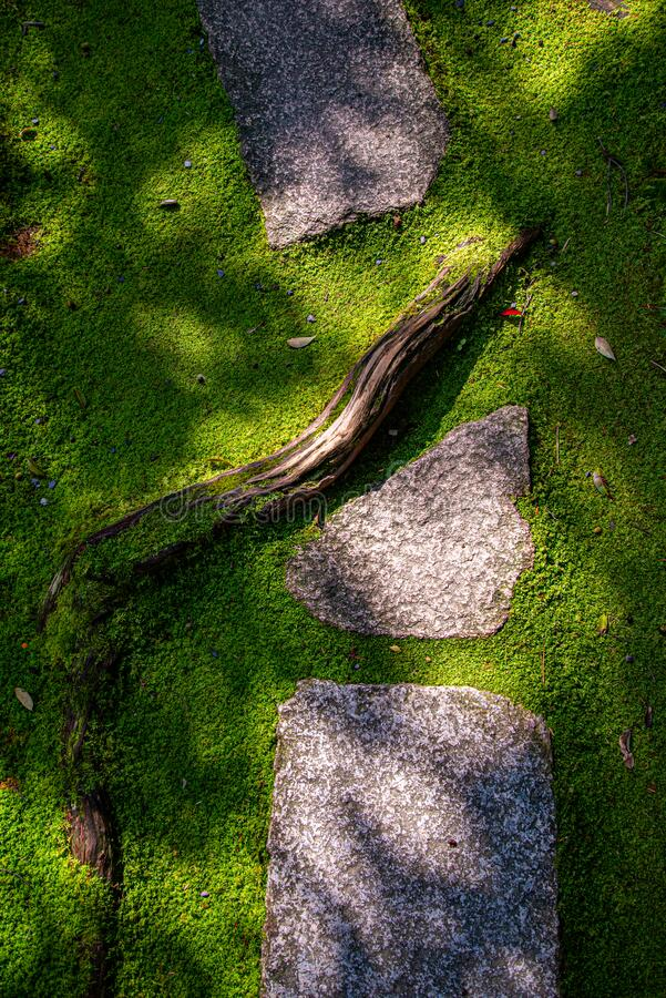 Free Japanese Miniature Garden Detail. Moss, Stones And A Root Stock Photos - 184080593