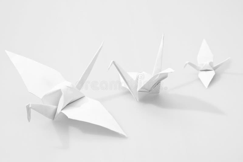 Japanese paper craft origami birds. Isolated on white stock photo