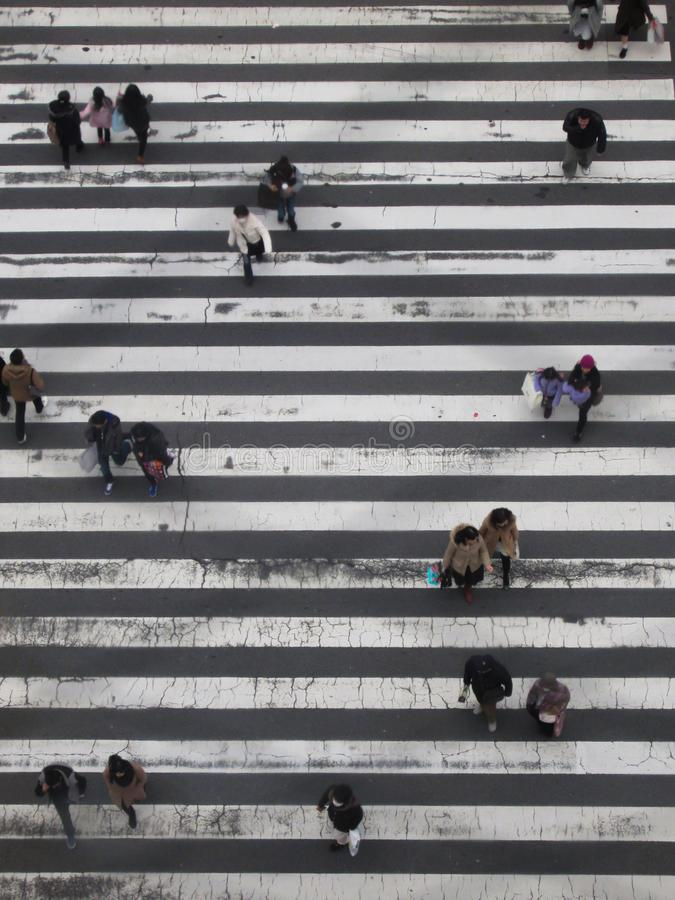 Japanes People On A Crossing royalty free stock photo