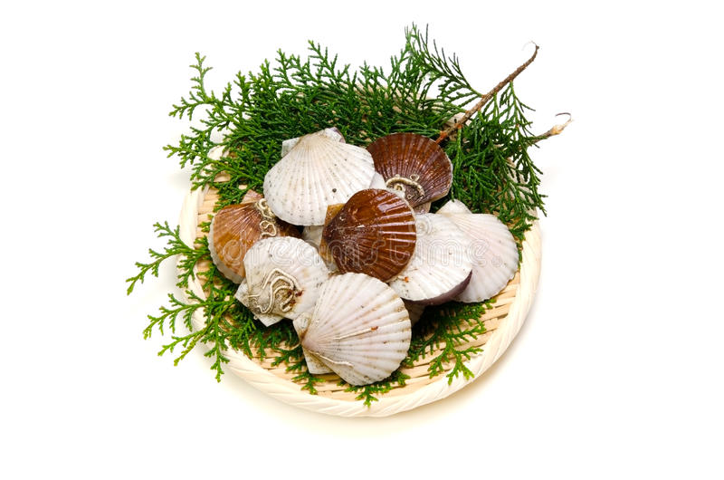 Download Japanese Scallop Royalty Free Stock Images - Image: 26549489