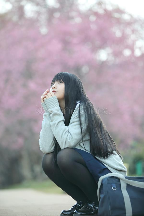 Japanese school girl dress sitting with sakura flower nature view. Japanese school girl dress sitting with sakura flower nature royalty free stock photo