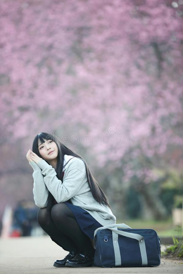 Japanese school girl dress sitting with sakura flower nature view. Japanese school girl dress sitting with sakura flower nature stock photography
